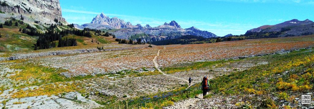 Caminhando na Teton Crest Trail, trecho entre o Marion Lake e a Death Canyon Shelf.