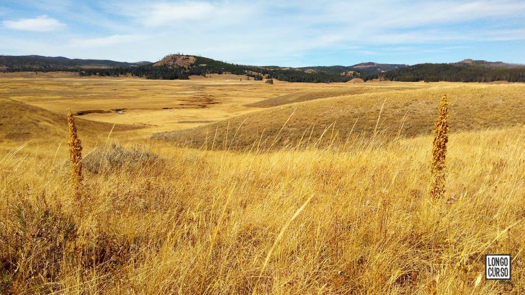 Visual da Pelican Valley Trail