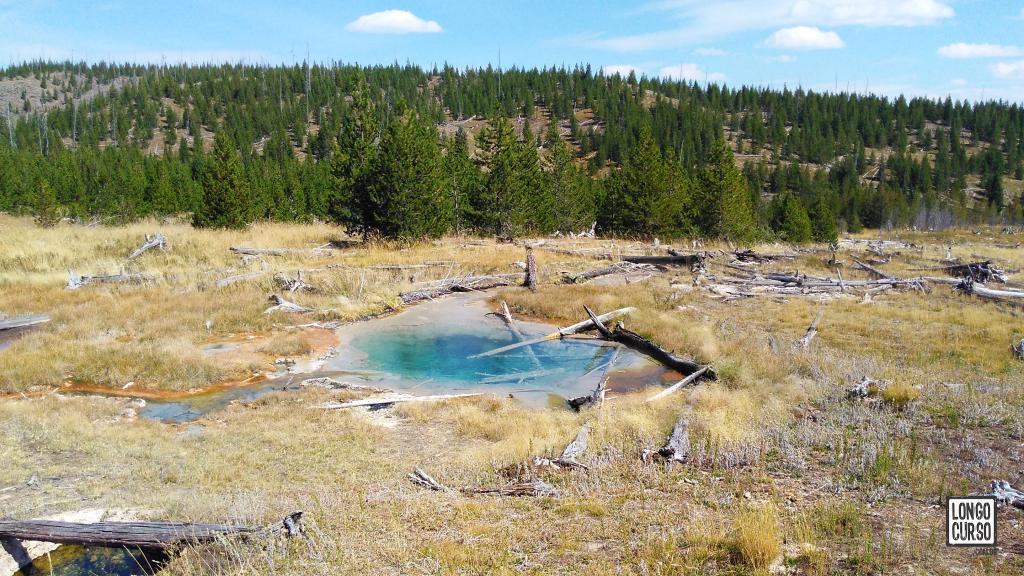 Fontes termais na trilha para o Heart Lake